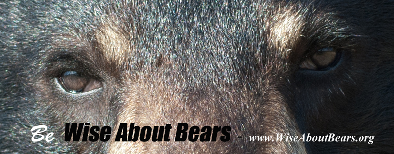 be-Wise-About-bears