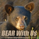 mouse-pad-b-bearwithus-logofb