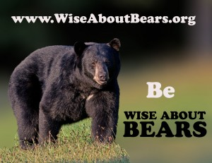 wiseaboutbears,text aug30,2012,300mm,D80_5899