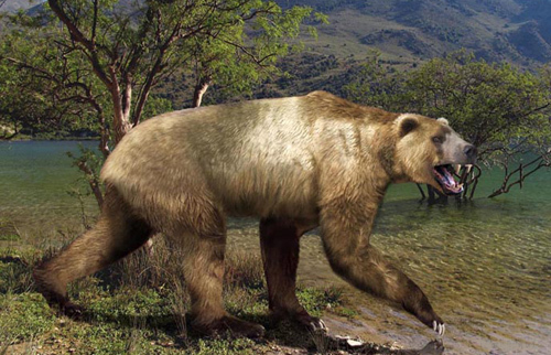 Short Faced Bear Vs Ca...
