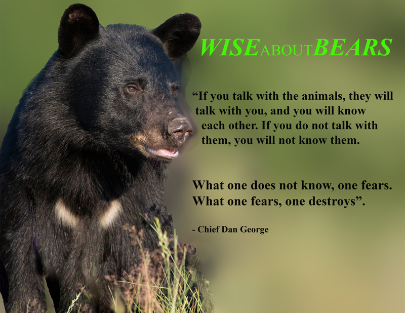 wiseaboutbears,quote,a,web,mom,july-10-2012,300mm,D80_3176